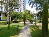 敷地内にある散歩道