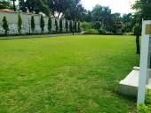 玄関前に広がる緑の空間。「小さなお子様が喜ぶ柔らかい芝生スペースです」