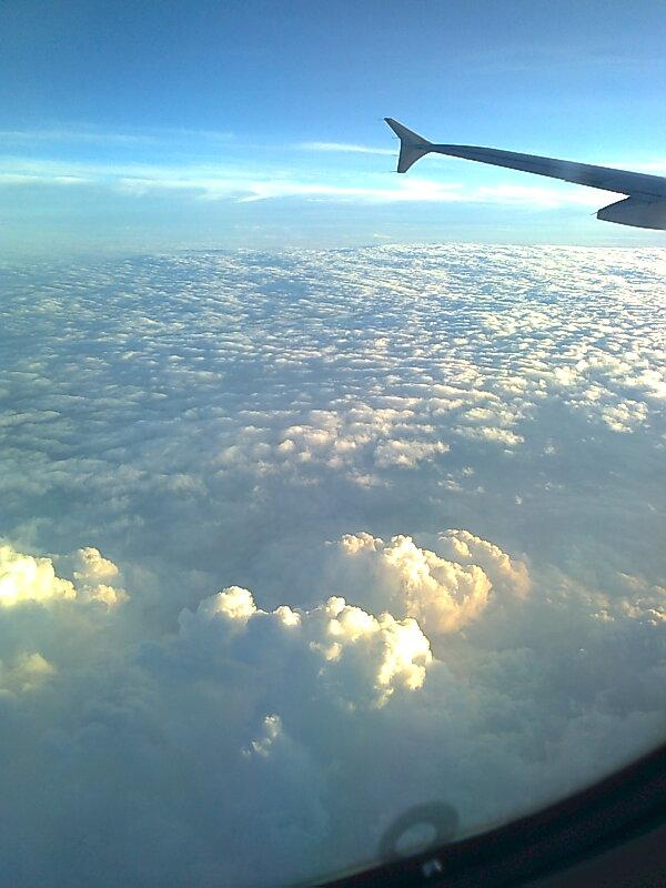 今、日本に一時帰国中です