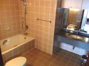 広いサニタリースペース「もう一つ玄関脇に洗面があります」