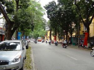 表の「Le Thanh Tong通り」。濃い緑が目に染みこんできますね。