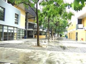 緑の多い学校校舎です