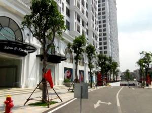敷地内の歩道と車道