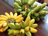 ベトナムの人々には特別な果物「Chuoi Ngu(大様のバナナ)」