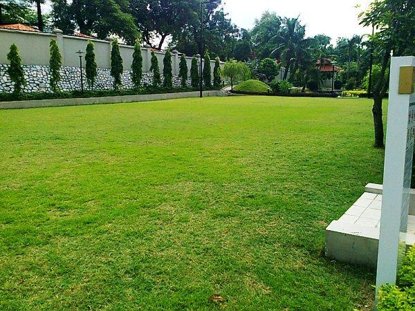 お子様に優しい芝生の広場