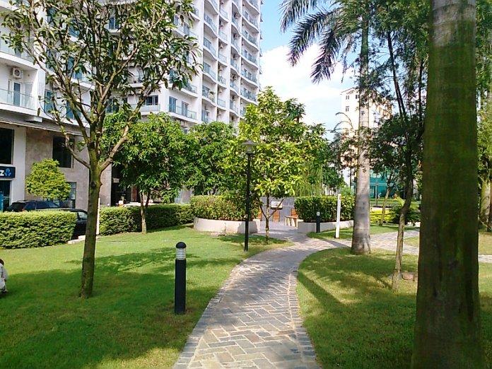 敷地内の遊歩道