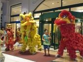 中秋節の獅子舞「子供と同時に大人も楽しむ特別な日です」