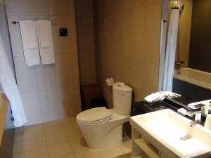 広々とした123㎡2bedの洗面浴槽スペース