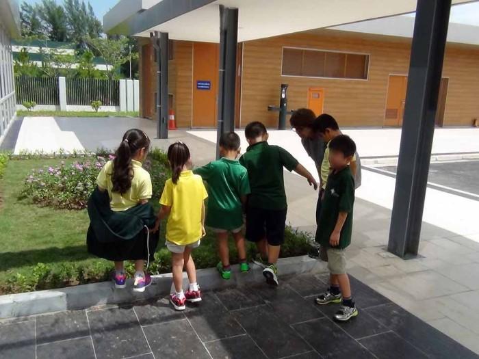 子供たちが伸び伸びと遊べる環境がふんだんにあります