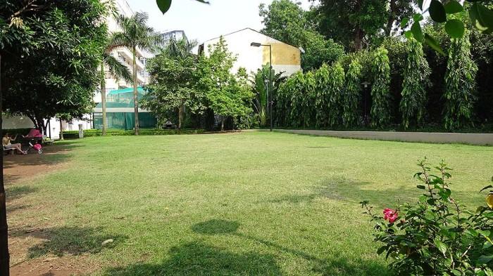この芝生スペースが本アパートの一番の「売り」かもしれません