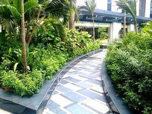敷地内にある緑豊かな遊歩道