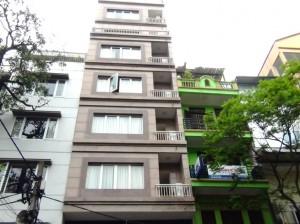 Ngo Thi Nham Apartment全容