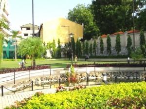 Golden Westlakeの芝生共用スペース