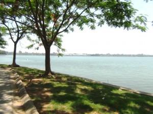 タイ湖沿岸の風景