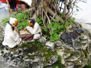 文廟内にある鉢植えのミニチュア