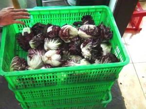 ダラット産の有機野菜が豊富に並んでいます