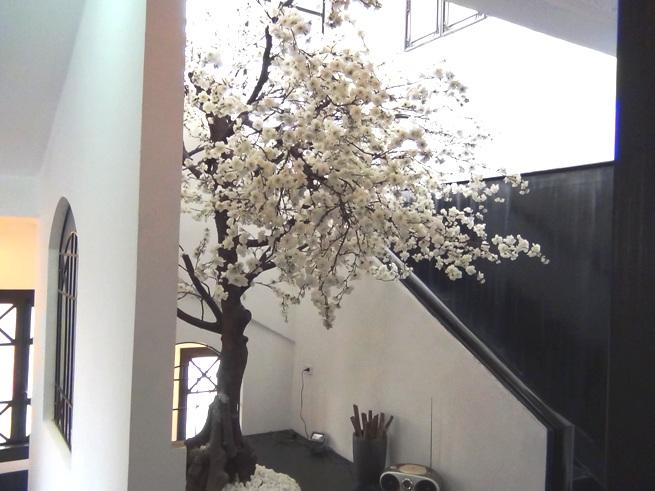 階段の踊り場には桜の木がさりげなく・・・