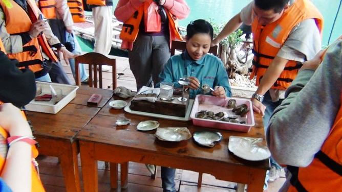 真珠の養殖は日本の技術が生きています