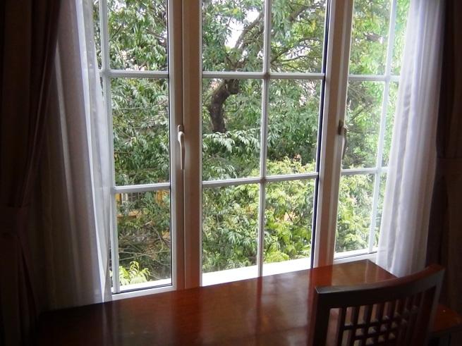 窓の外は緑濃い木々が立ち並んでいます