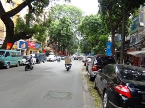 目の前の通りが緑の濃い並木道になっています