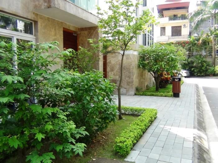 家の庭先はどこの家も緑を競い合っています