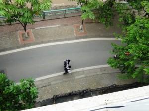 前面道路の車幅