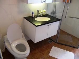 洗面と便器「新築ですので綺麗ですね」