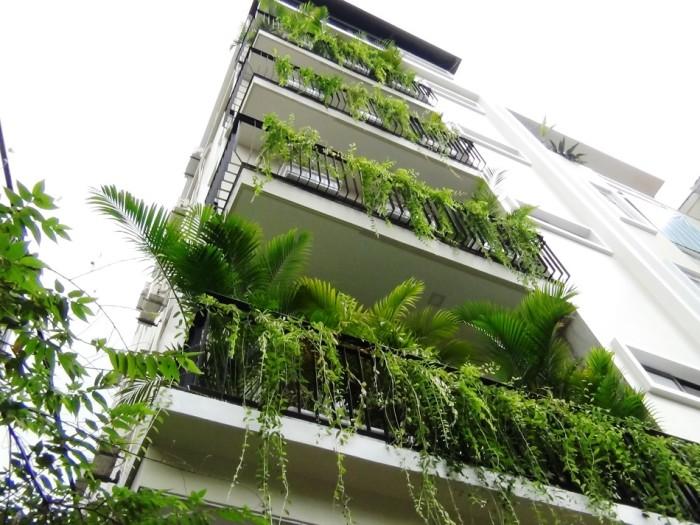 新築アパートは角地に建つので明るいです「No9A-B10 Nguyen Chi Thanh Apt」