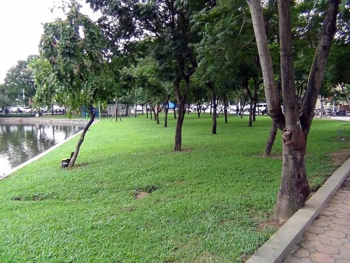 すぐ目の前に広がる湖畔の緑地