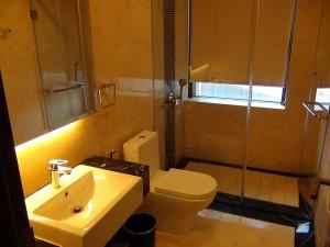 バスルーム「グラスシャワーとトイレが併設されています」