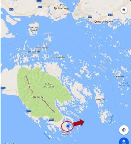Cat Ba島沖はハロン湾でした