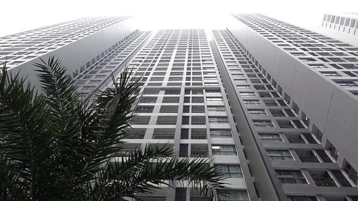 一棟が35階建て、それが果たして何棟建っているのか・・