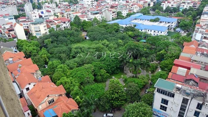 Cau Giay地区にあるこんもりした森のこの土地は、買えば確実に上がり続ける。こんな物件があるんです